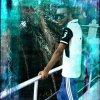 Profil de Djila-boy