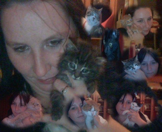 moi et tous les petit chatons que mes chat angora a fait
