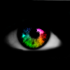 Profil de intellodu59