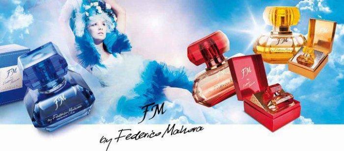 Fm Group Federico Mahora