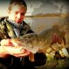 Profil de fish57