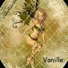 Profil de vanille-023