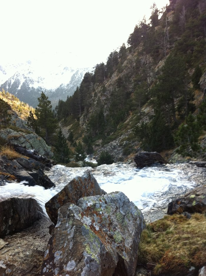 el silencio era creado por los rapidos del rio