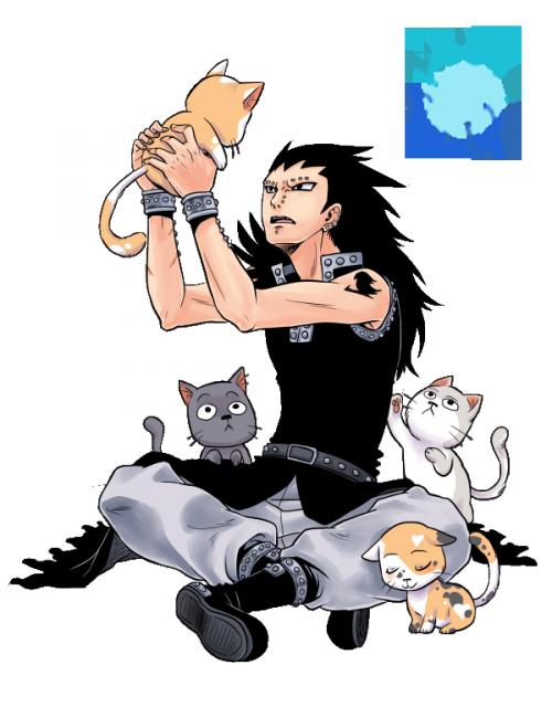 gazille avec les chats
