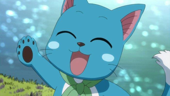 happy le meilleur ami de natsu