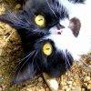 Profil de XPhotos--3