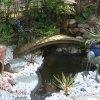 Profil de edelweiss929
