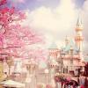 Profil de Disney-Diaries