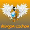 Profil de Dragon-cochon