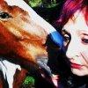 Profil de horse--010