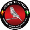 aviarioelpavillo's Profile