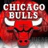 bulls-official