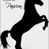 poneyclubjollain
