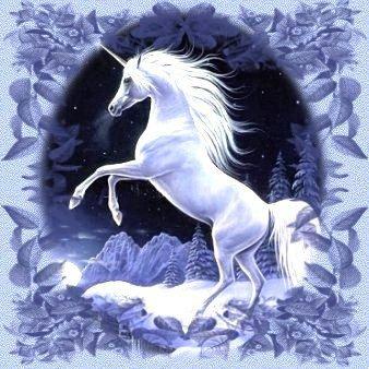 Une magnifique licorne trouvée sur Internet.