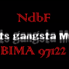 Profil de RGM