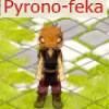 Profil de Pyrono-team