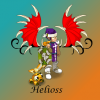 Profil de Helioss-team