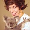 Harry-OneDirection