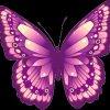 Profil de petit-papillon-violet