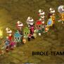 Profil de Birole06