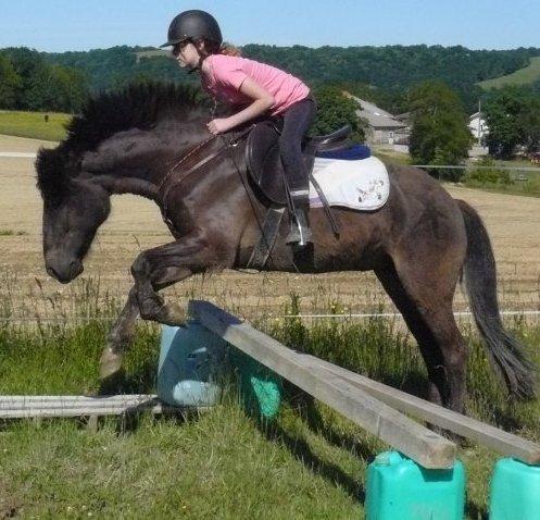 Aihnoa (poney de ma soeur) et moi entrain de sauter !