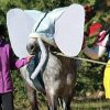 concour-photos-poney