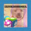 NintendogsDsiXl