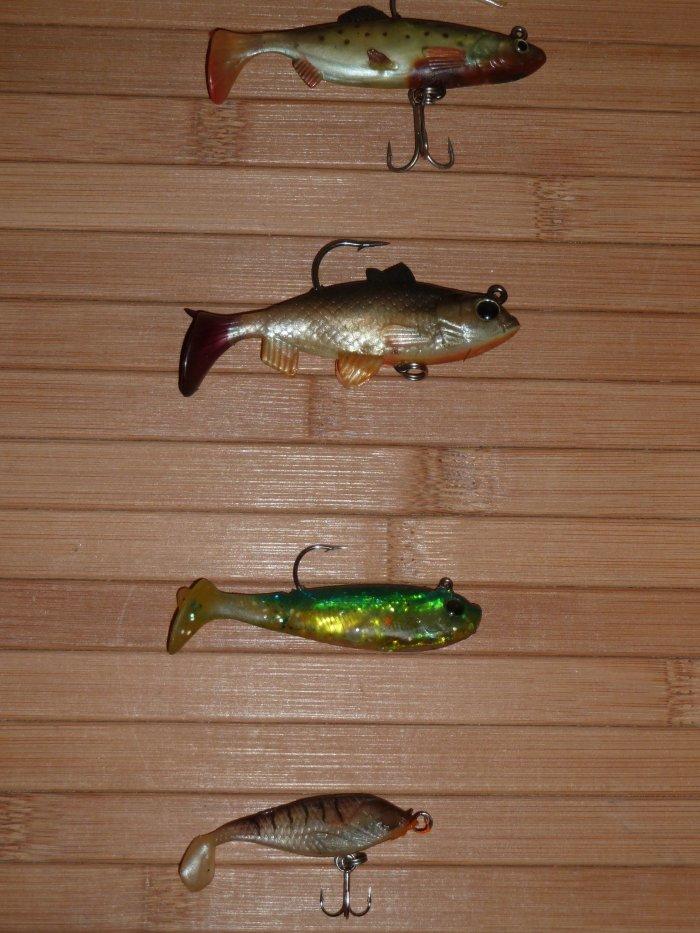 Petits poissons nageurs souples