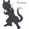 Profil de dark-cat79