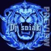 DeejaySniakmix-officiel