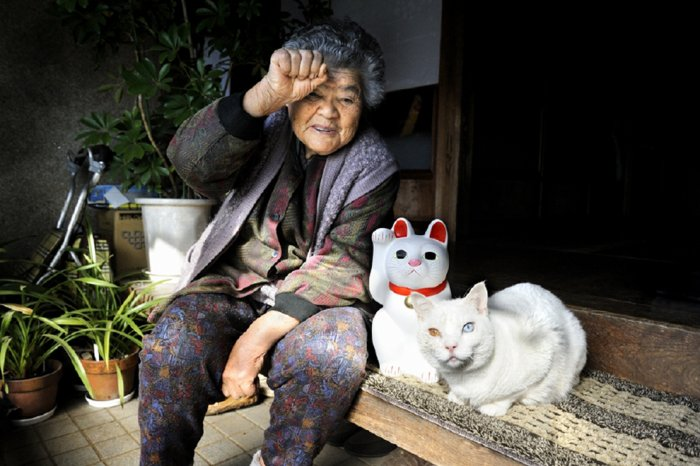招き猫 (maneki neko)