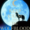wolfbloodTVD
