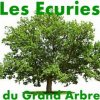 Ecuries-du-Grand-Arbre