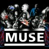Profil de MuseShowbizRock