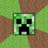 Profil de Minecraft-12
