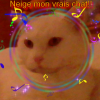 Profil de Love-Nintend0gsx