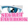 Profil de MistrerSecret