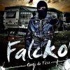 Profil de Falcko-914