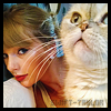 Profil de Swift-Taylor