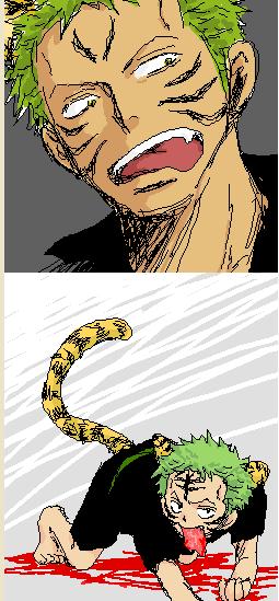 tiger zoro *-*