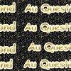 Repond-Au-Questions-2013
