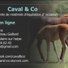 Profil de caval-and-co