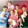 Profil de The-OneDirection-Fiction