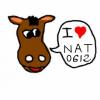 nat0612