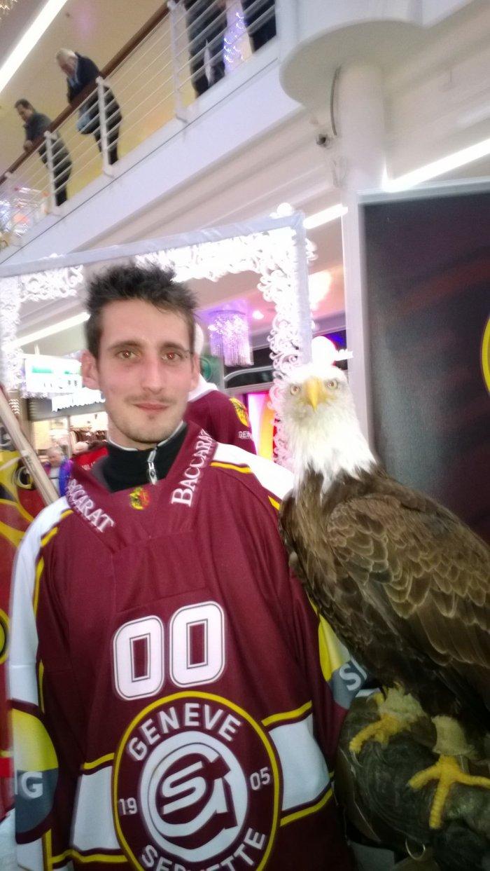 Les aigles. Hockey club Genève Servette, et leur mascotte Sherkan