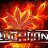 Profil de Teuchiland-fans