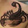 scorpion201212