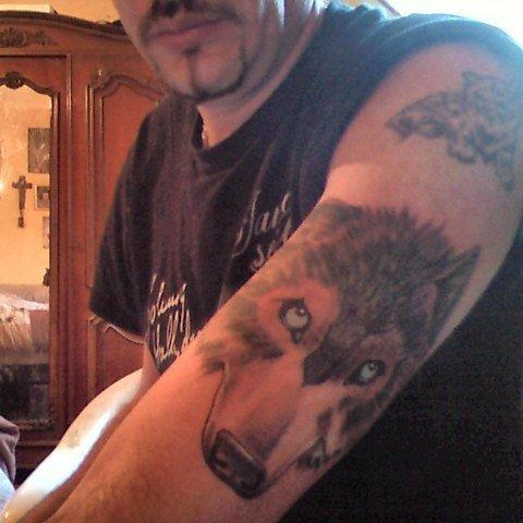 mon tatouage de johnny hallyday le loup