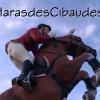Profil de HarasdesCibaudes