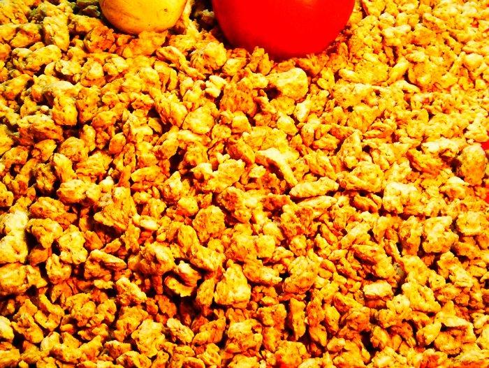 protéines de soja bio